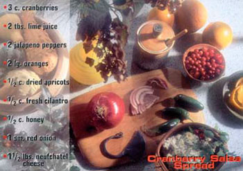 Cranberry Salsa Spread recipe from Mackerel Sky Gallery of Contemporary Craft